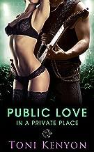 Public Love in a Private Place (Rockstar Romance) (Private Love Book 3)