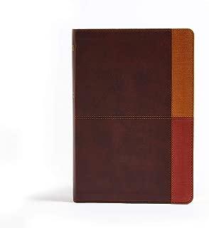 NIV Rainbow Study Bible, Cocoa/Terra Cotta/Ochre LeatherTouch, Indexed