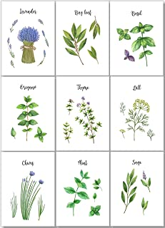Kitchen Herb Art Prints - Botanical Wall Decor - Watercolor - Farmhouse Decor - (Set of 9) - 5x7 - Unframed