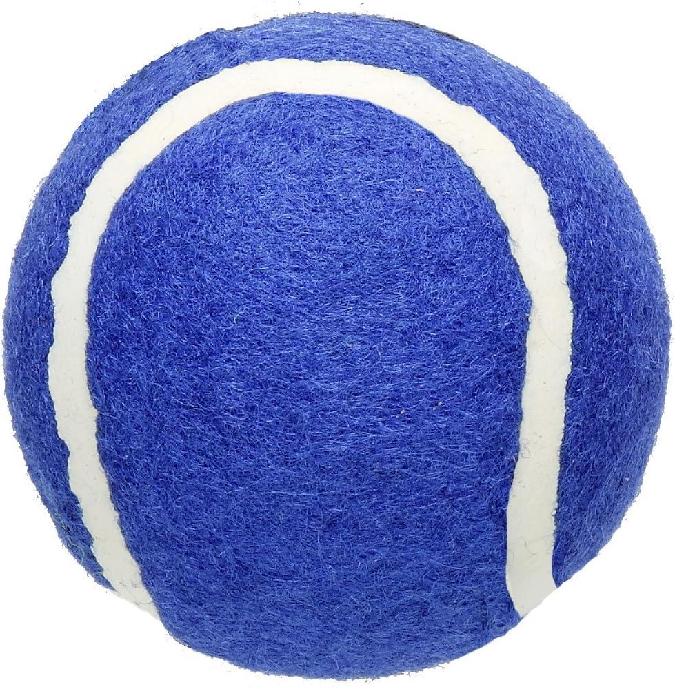 Penco Pwb0074bl Walker trend rank Blue Balls Popular brand in the world