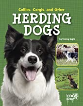Collies, Corgies, and Other Herding Dogs (Dog Encyclopedias)