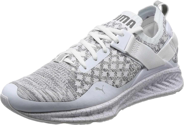 Puma Men's Ignite Evoknit Lo Hypernature Multisport Outdoor shoes