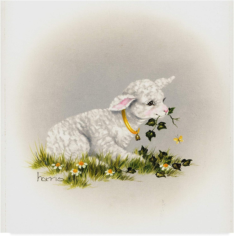 Trademark Fine Art Little Lambsy Divey Art by Peggy Harris, 14x14