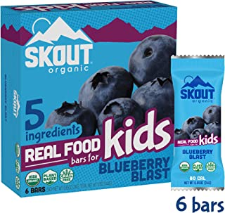 SKOUT Organic Real Food Bars for Kids - Blueberry Blast - Vegan Snacks - Plant Based Bars - Non-GMO - Gluten Free, Dairy Free, Soy Free - No Refined Sugar - 0.85 oz (6 Count)