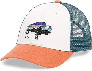 Men's Mesh Adjustable Snapback Bison Trucker Hat