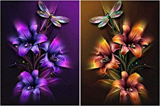 HaiMay 2 Pack DIY 5D Diamond Painting by Number Kits Full Drill Round Rhinestone Embroidery Pictures Arts Craft for Home Wall Decoration, Flowers and Dragonfly(12×16inch)