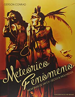 Meteórico Fenômeno. Memórias de Um Ex-Secos & Molhados