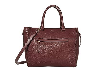 Fiorelli Anna Tote (Oxblood) Handbags