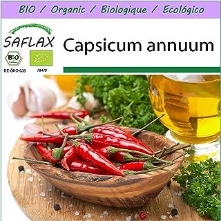 SAFLAX - BIO - Chili - De Cayenne Long Slim - 10 Samen - Capsicum annuum