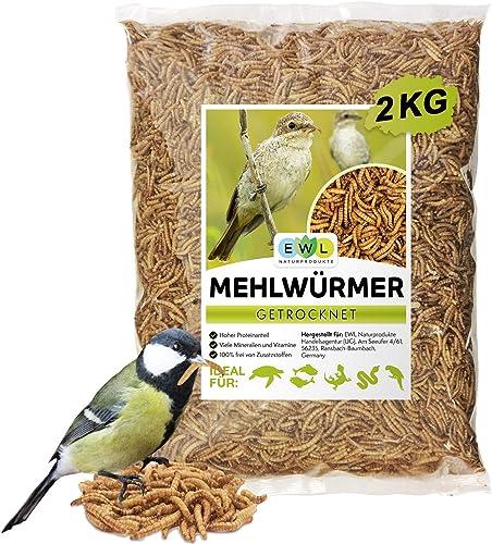 EWL Naturprodukte Vers de farine séchés, 2kg correspond à 13l, friandises pour oiseaux, poissons, tortues, rongeurs...