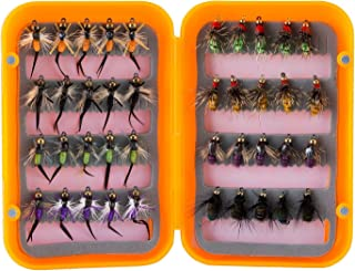 Piscifun 40pcs Wet Flies Fly Fishing Lures Bass Salmon Trouts Sinking Flies Assortment with Fly Box Multicolor 10# Hook …