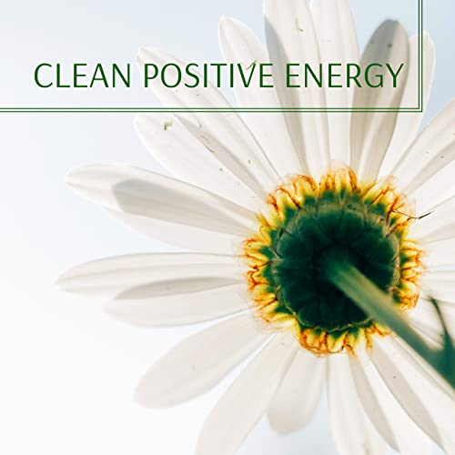 Clean Positive Energy - Meditation Music, Relax Mind Body