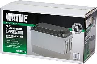 Best battery for sump pump Reviews