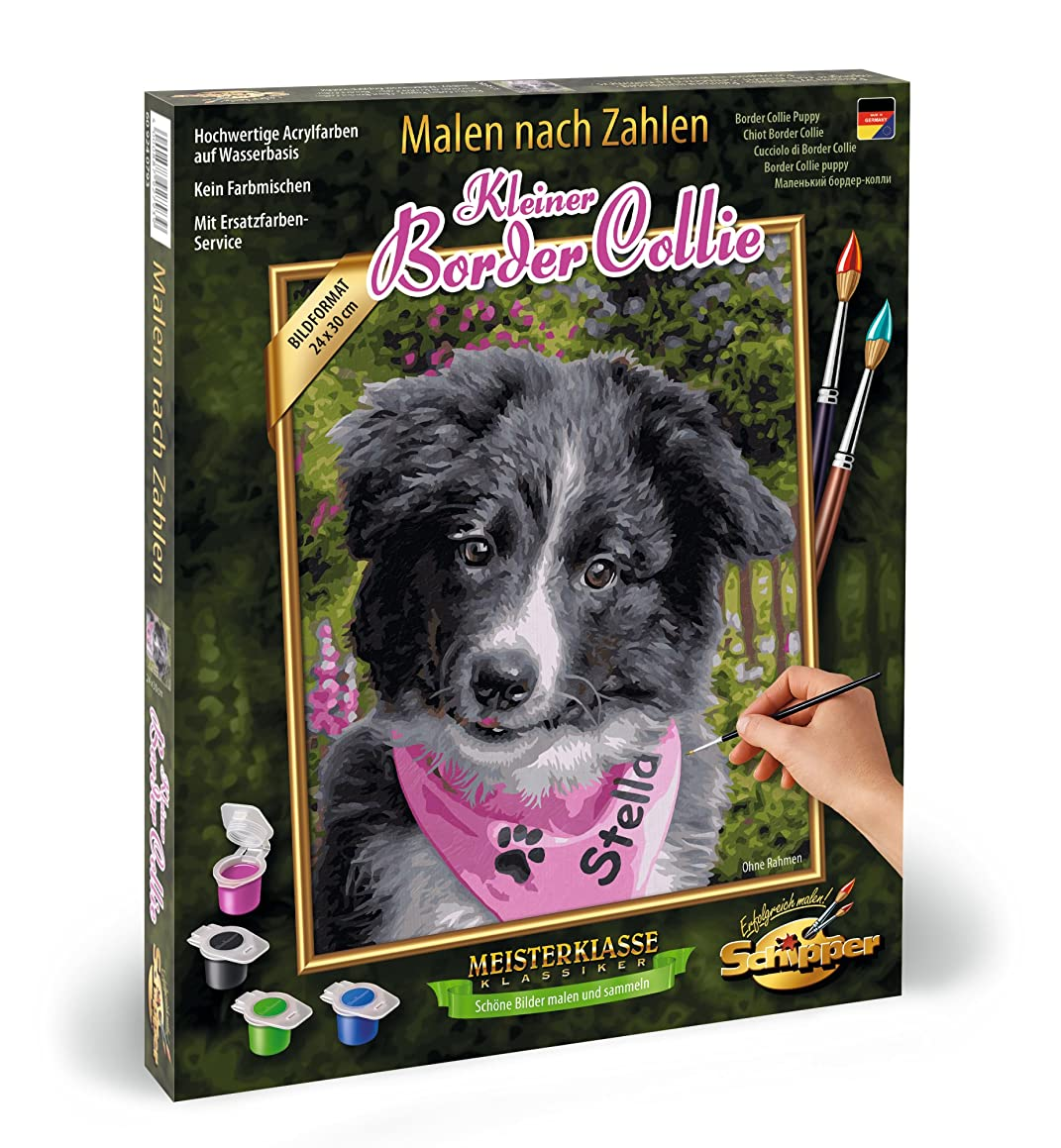 Noris Spiele Schipper Paint by Numbers – Small 609240793 Border Collie, 24 x 30 cm Assorted Colours
