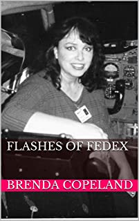 Flashes of FedEx (English Edition)