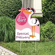 Best baby stork girl Reviews