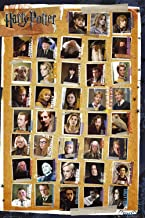 Harry Potter and the Deathly Hallows - Characters Poster 24 x 36in