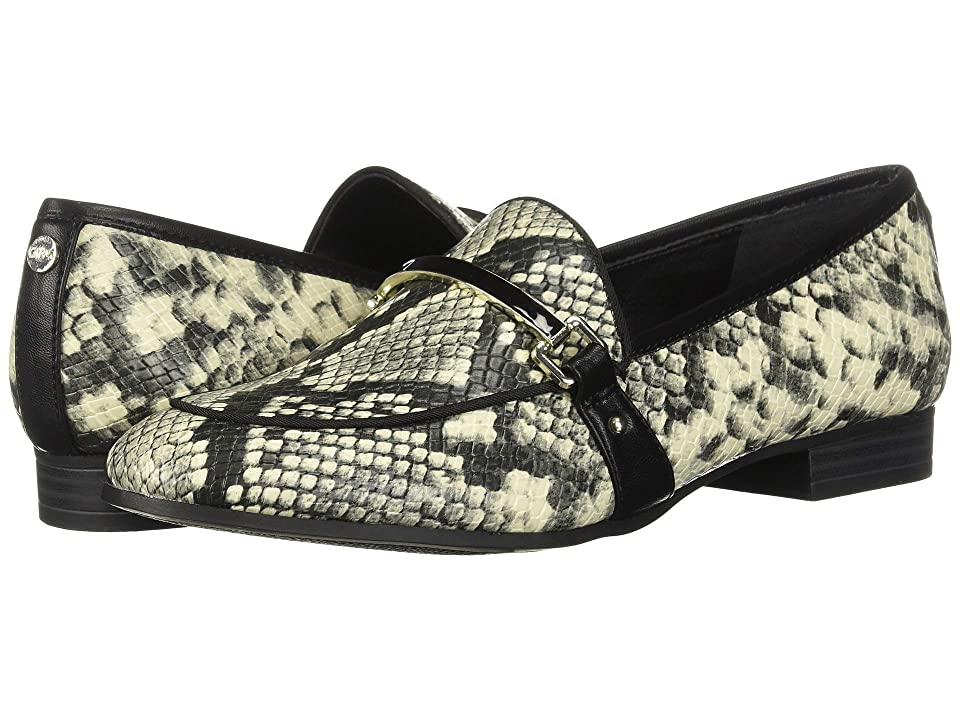 Circus by Sam Edelman Hendricks (Cashmere/Black Amazon Python) Women