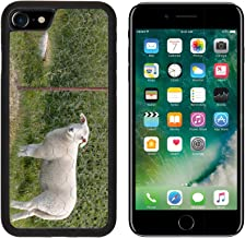 MSD Premium Apple iPhone 7 Aluminum Backplate Bumper Snap Case iPhone7 Portrait of a lamb behind an electric fence IMAGE 30574376