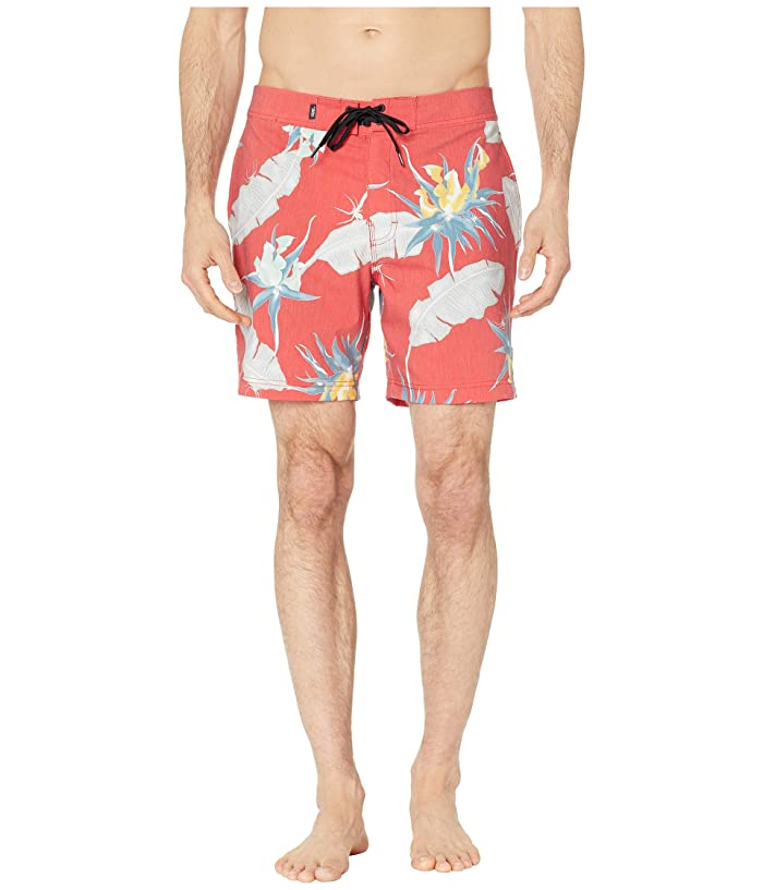 14d0b19ec6ea4 Vans - Men's Swimwear and Beachwear