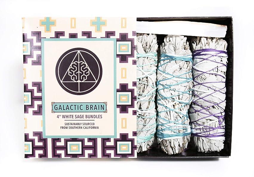 事業内容できるストライクGalacticBrain 4インチ カリフォルニアホワイトセージスマッジバンドル/スマッジスティックキット ご自宅をきれいにしましょう。 瞑想/ヨガの練習を強化。 振動を上げましょう。 パロサントスティック 2本 セレナイトクリスタル