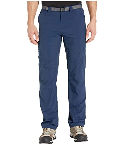 Columbia Silver Ridgetm Cargo Pant (Collegiate Navy) Men
