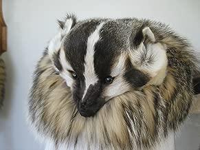 Best badger fur hat Reviews