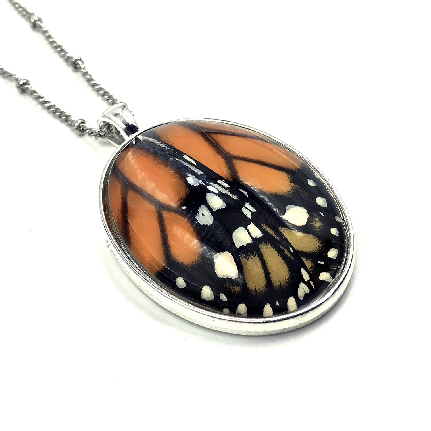 Real Monarch wing Bombing new work necklace Preserved butterfly in glass Seasonal Wrap Introduction terrariu