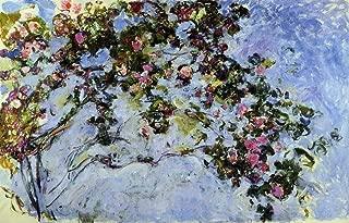 Claude Oscar Monet The Rose Bush - 18