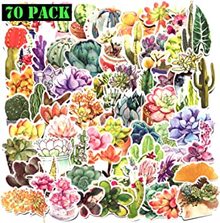 Girl Cute Sticker Decals Watercolor Cactus and Succulent Plants Stickers Water Bottle Skateboard Motorcycle Phone Bicycle Luggage Guitar Bike Sticker Decal(70pcs Pack)