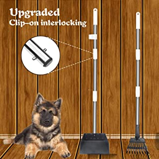 Best four paws rake set large Reviews