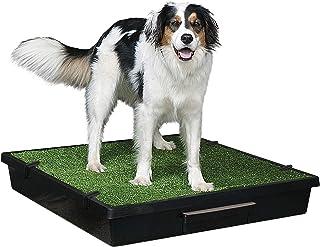 PetSafe Pet Loo Portable Dog Potty, Alternative to Pee Pads, Large