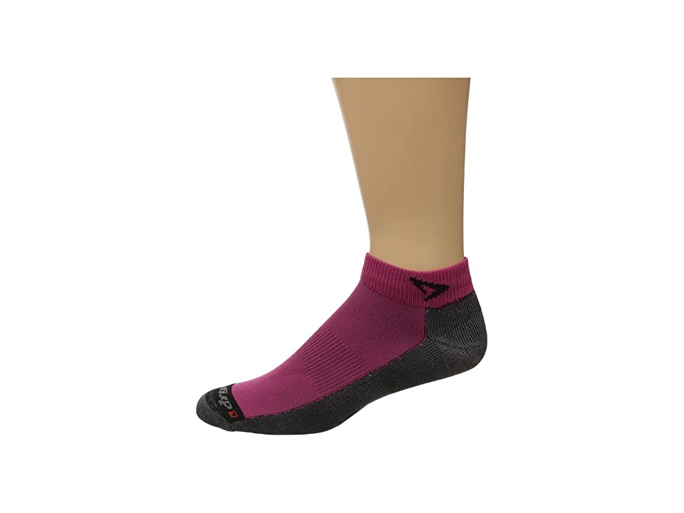 Drymax Sport Lite Trail Running Mini Crew 3-Pack (October Pink/Anthracite) Crew Cut Socks Shoes