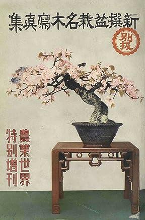 Shinsen bon sai meiboku shashinshuu: Government General of Chosen Library Collection (Japanese Edition)