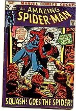 AMAZING SPIDER-MAN #106 comic book-Bronze Age-Peter Parker VG