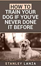 Therapy Dog Training: How to Train Your Dog if You've Never Done It Before (English Edition)