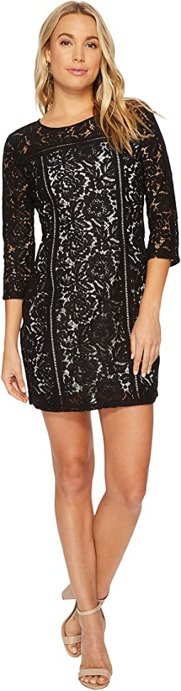 Jack by BB Dakota - Shelby Floral Dress with Ladder Trim