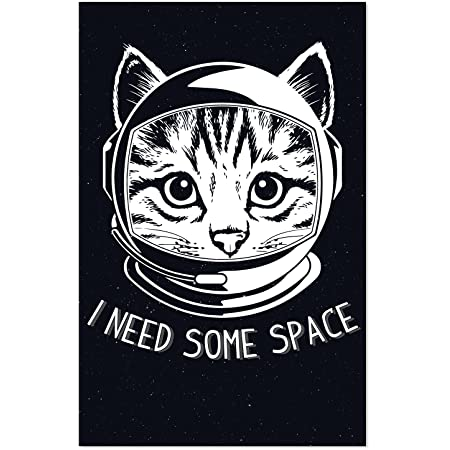 Space Cat High Quality Print; Photography Print; Poster