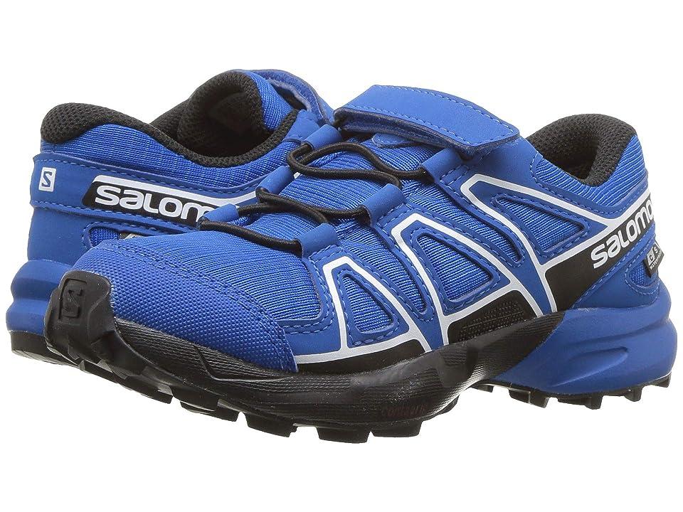 Salomon XA Pro 3D GTX® Hommes chaussure de course (grisjaune)
