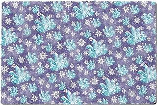 Rainbow Rules Indoor Doormat - Frozen Snowflakes and Crystals