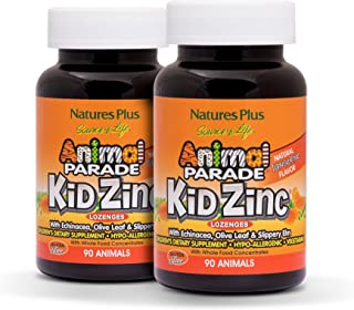 NaturesPlus Animal Parade Source of Life KidZinc Lozenges (2 Pack) - Tangerine Flavor - 90 Animal Shaped Tablets - Immune ...