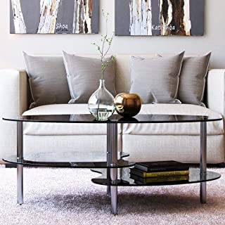 Ryan Rove Elm 38 Inch Oval Modern Two Tier Black Glass Coffee Table (Black Top and Bottom)