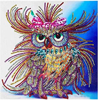 Rakkiss 5D Diamond Painting Rhinestone Painted Owl Color Gorgeous Embroidery Wallpaper DIY Cross Stitch Arts Kit Crystal for KidsFor Adult Decoration Drawing 30x30cm White