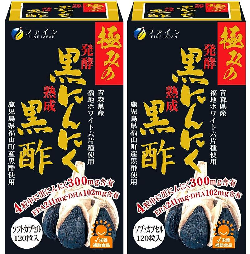 騒ぎ振る舞う予測ファイン 発酵黒にんにく黒酢 黒酢エキス末配合 30日分 (1日4粒/120粒入)×2個セット