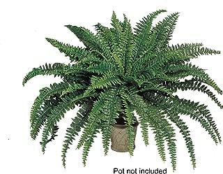 Best silk fern plants Reviews