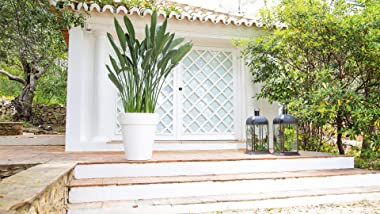 ARTEVASI 5600442815689 Capri High Pot 46 cm Safari, Green, Green