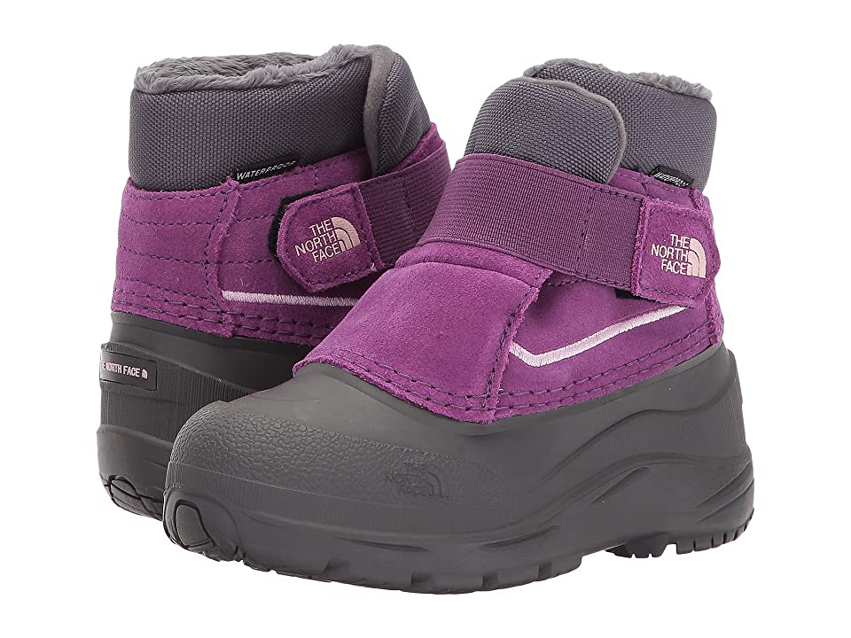 The North Face Kids Alpenglow (Toddler) (Dark Gull Grey/Wood Violet) Girls Shoes