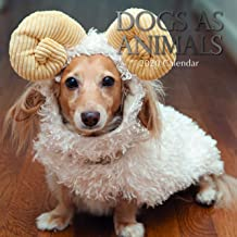 2020 Wall Calendar - Dogs in Animal Costume Calendar, 12 x 12 Inch Monthly View, 16-Month, Pets Theme, Includes 180 Reminder Stickers