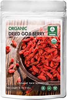 Naturevibe Botanicals Organic Goji Berries Dried (1lbs) Gluten-Free & Non-GMO | Raw Superfood | Nutritious and Boost Energy Level