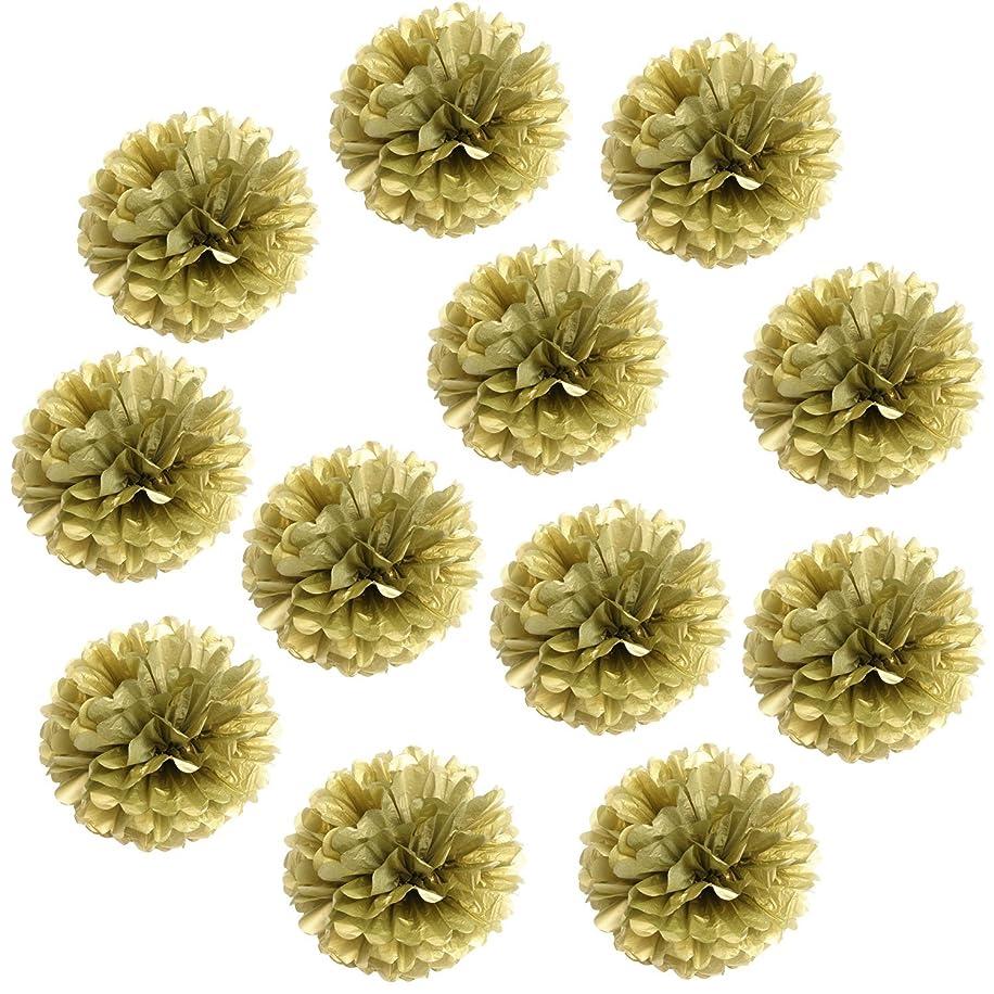 Landisun Wedding Birthday Party Room Decoration Tissue Paper Flower Poms (10
